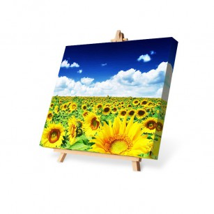 Canvas Painting 70x100